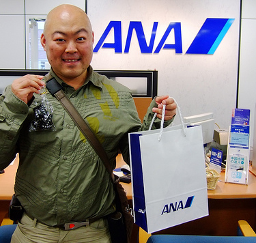 ana-airline promos
