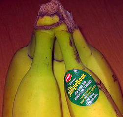jungle-book bananas