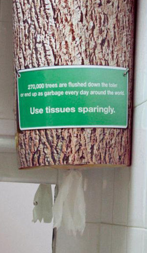 tree-trunk-paper towels